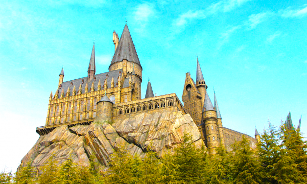 Lessons from Hogwarts Charter School